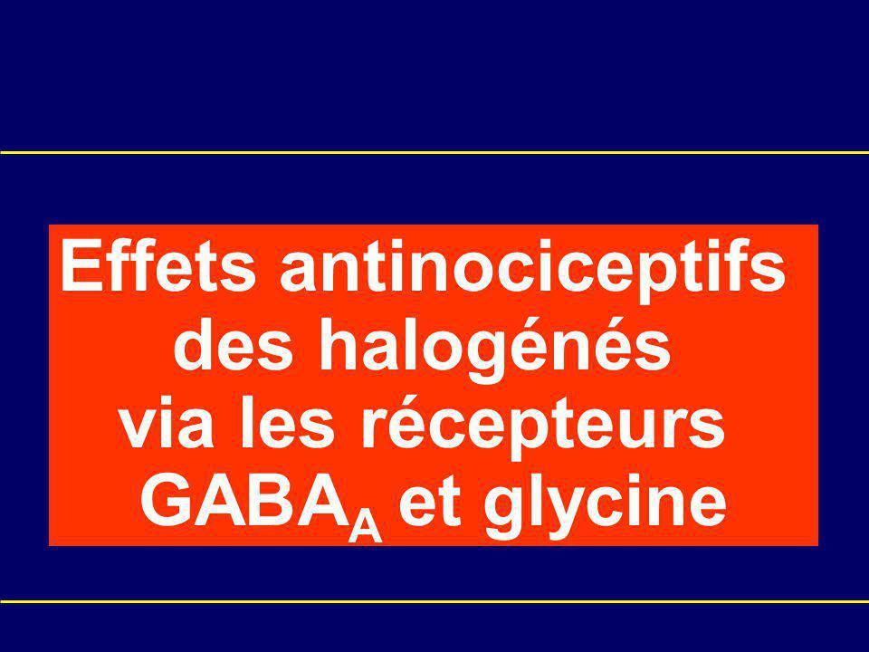 Effets antinociceptifs des halogénés via les récepteurs GABA A et glycine