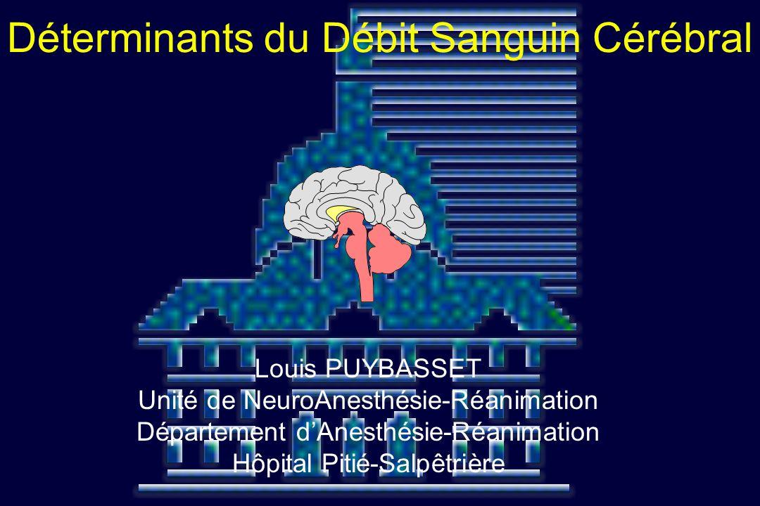 Louis PUYBASSET Unité de NeuroAnesthésie-Réanimation Département dAnesthésie-Réanimation Hôpital Pitié-Salpêtrière Déterminants du Débit Sanguin Céréb
