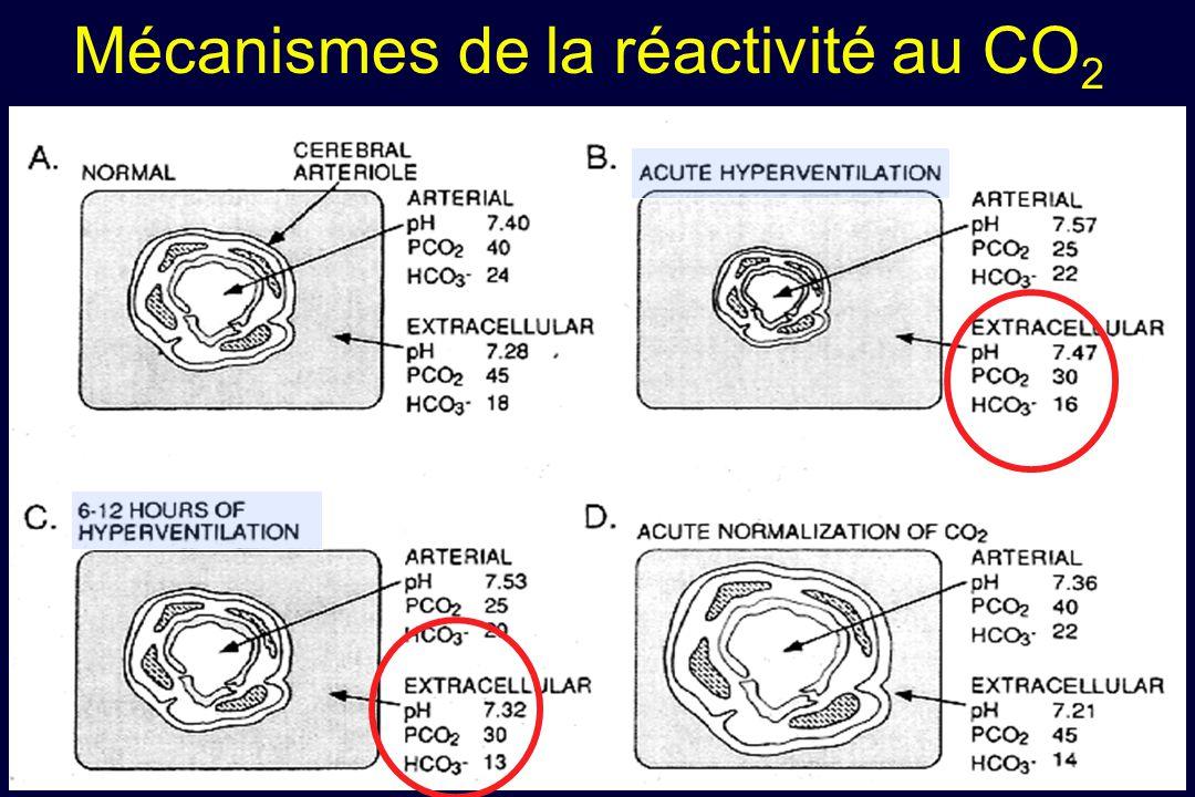 Mécanismes de la réactivité au CO 2