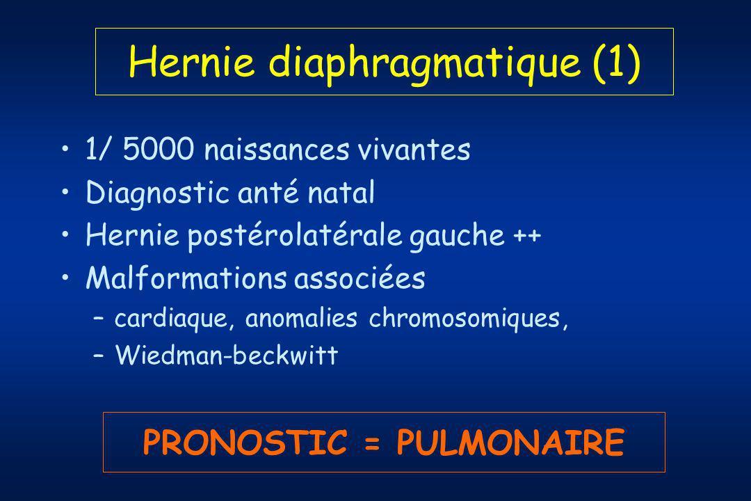 Hernie diaphragmatique (1) 1/ 5000 naissances vivantes Diagnostic anté natal Hernie postérolatérale gauche ++ Malformations associées –cardiaque, anomalies chromosomiques, –Wiedman-beckwitt PRONOSTIC = PULMONAIRE