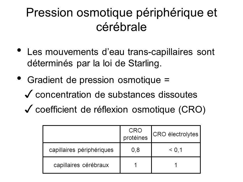 Pression osmotique périphérique et cérébrale Les mouvements deau trans-capillaires sont déterminés par la loi de Starling. Gradient de pression osmoti