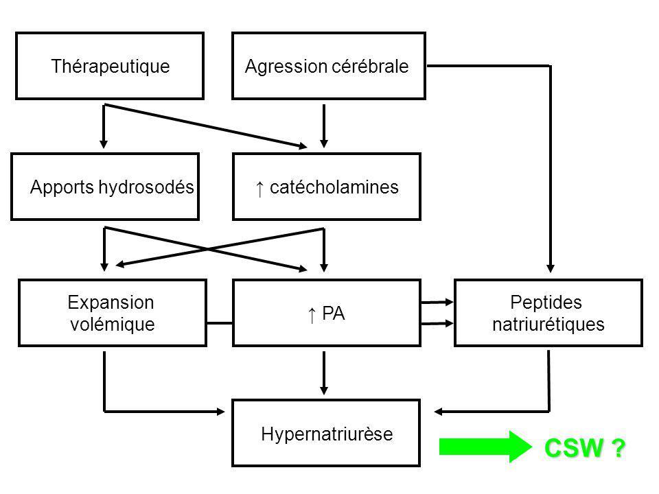 PA Expansion volémique Hypernatriurèse CSW ? Agression cérébraleThérapeutique Apports hydrosodés catécholamines Peptides natriurétiques