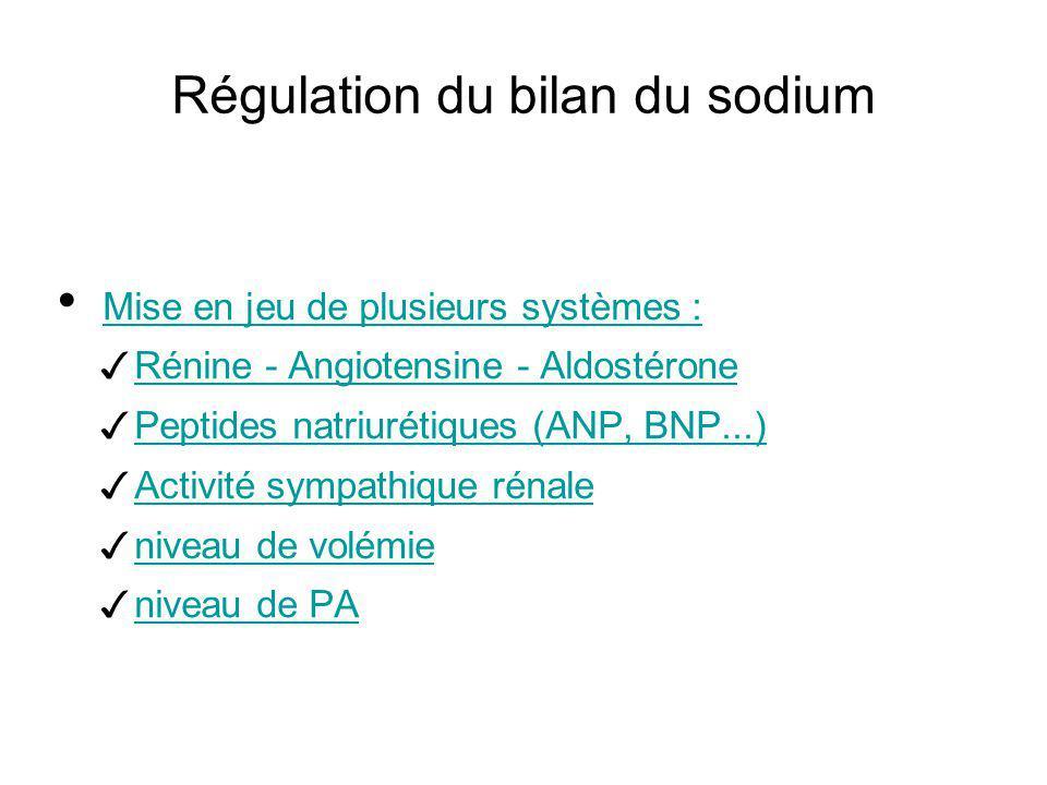 Régulation du bilan du sodium Mise en jeu de plusieurs systèmes : Rénine - Angiotensine - Aldostérone Peptides natriurétiques (ANP, BNP...) Activité s