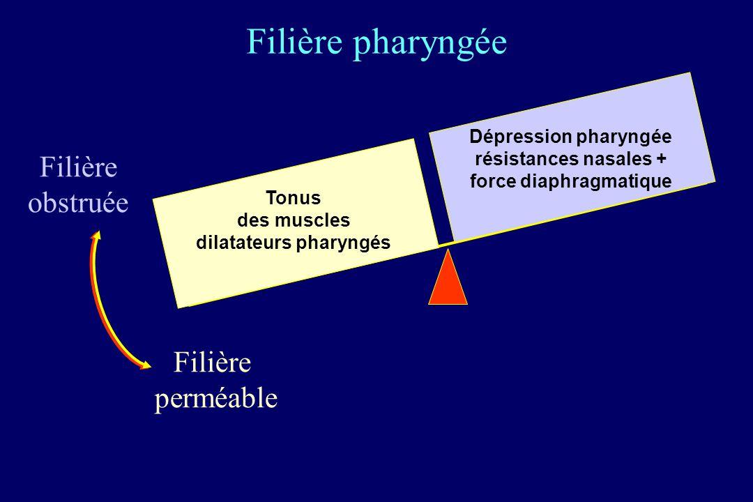 Filière obstruée Filière perméable Dépression pharyngée résistances nasales + force diaphragmatique Tonus des muscles dilatateurs pharyngés Filière ph