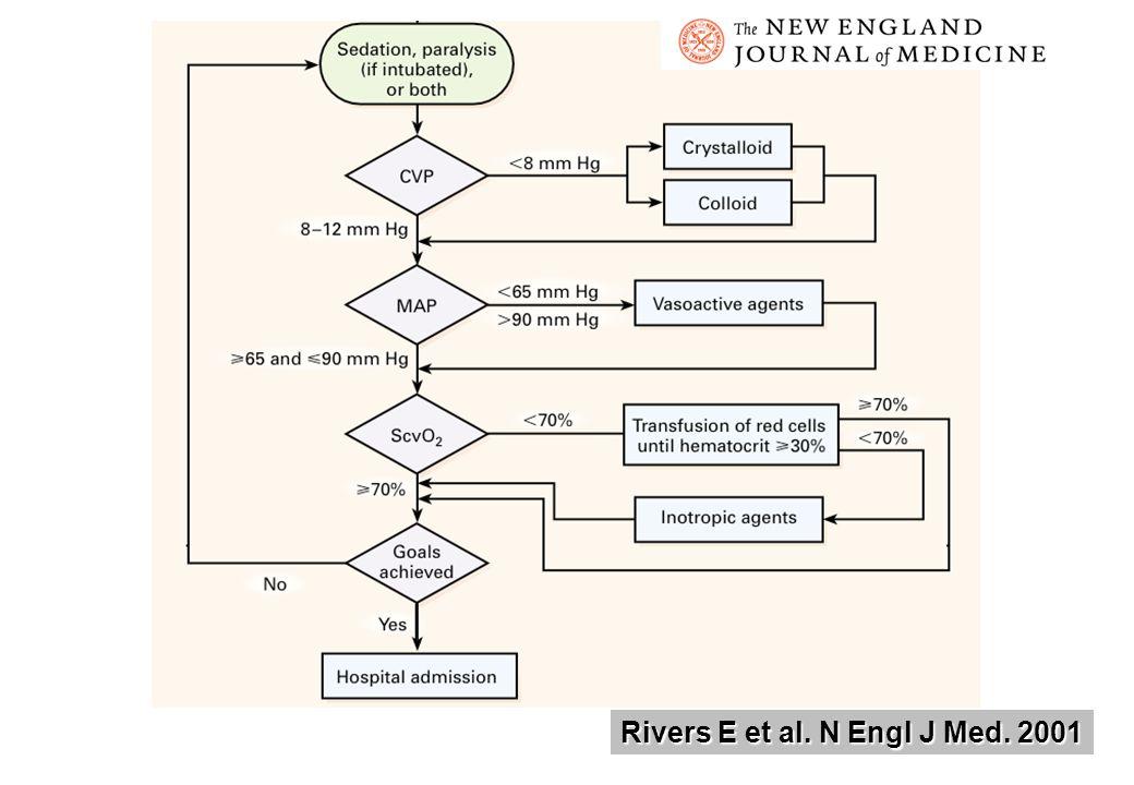 Rivers E et al. N Engl J Med. 2001