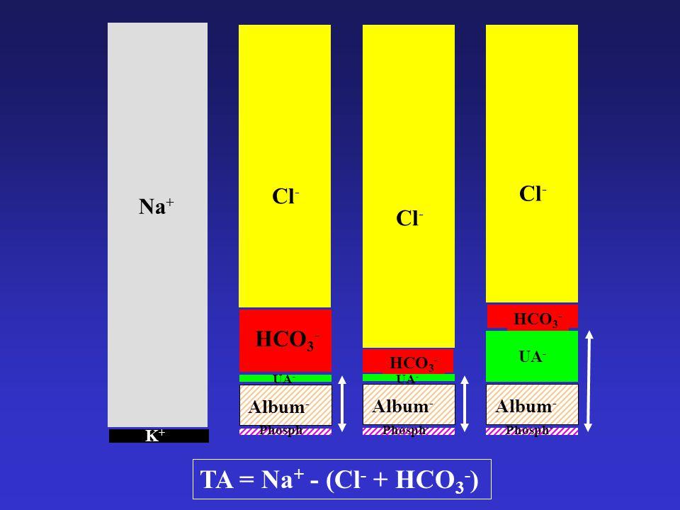 Na + K+K+ TA = Na + - (Cl - + HCO 3 - ) Album - HCO 3 - Phosph - Cl - UA - HCO 3 - Cl - Album - Phosph - UA - HCO 3 - Cl - Album - Phosph - UA -