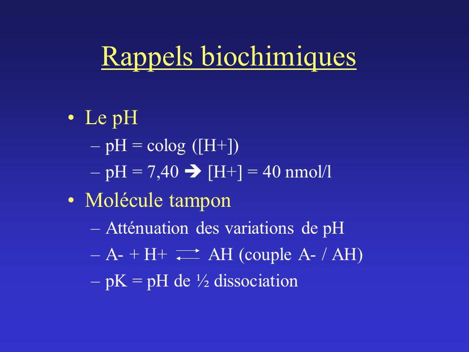 Rappels biochimiques Le pH –pH = colog ([H+]) –pH = 7,40 [H+] = 40 nmol/l Molécule tampon –Atténuation des variations de pH –A- + H+ AH (couple A- / AH) –pK = pH de ½ dissociation