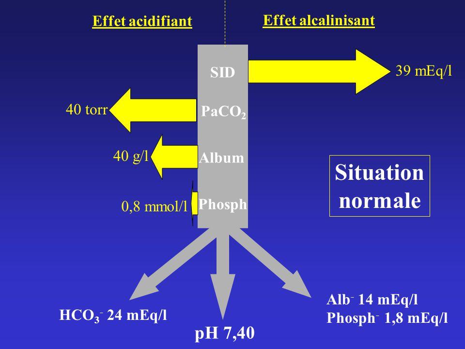 pH 7,40 HCO 3 - 24 mEq/l Alb - 14 mEq/l Phosph - 1,8 mEq/l Effet acidifiant Effet alcalinisant SID 39 mEq/l Album 40 g/l PaCO 2 40 torr Phosph 0,8 mmol/l Situation normale