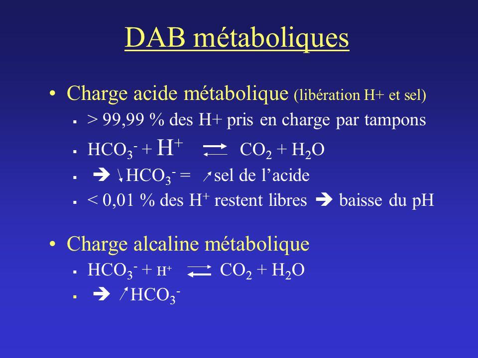 DAB métaboliques Charge acide métabolique (libération H+ et sel) > 99,99 % des H+ pris en charge par tampons HCO 3 - + H + CO 2 + H 2 O HCO 3 - = sel de lacide < 0,01 % des H + restent libres baisse du pH Charge alcaline métabolique HCO 3 - + H + CO 2 + H 2 O HCO 3 -