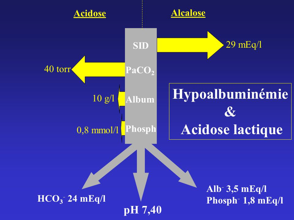 SID PaCO 2 Album Phosph pH 7,40 Acidose Alcalose 29 mEq/l 10 g/l 40 torr 0,8 mmol/l HCO 3 - 24 mEq/l Alb - 3,5 mEq/l Phosph - 1,8 mEq/l Hypoalbuminémie & Acidose lactique