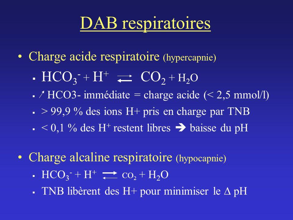 DAB respiratoires Charge acide respiratoire (hypercapnie) HCO 3 - + H + CO 2 + H 2 O HCO3- immédiate = charge acide (< 2,5 mmol/l) > 99,9 % des ions H+ pris en charge par TNB < 0,1 % des H + restent libres baisse du pH Charge alcaline respiratoire (hypocapnie) HCO 3 - + H + CO 2 + H 2 O TNB libèrent des H+ pour minimiser le pH