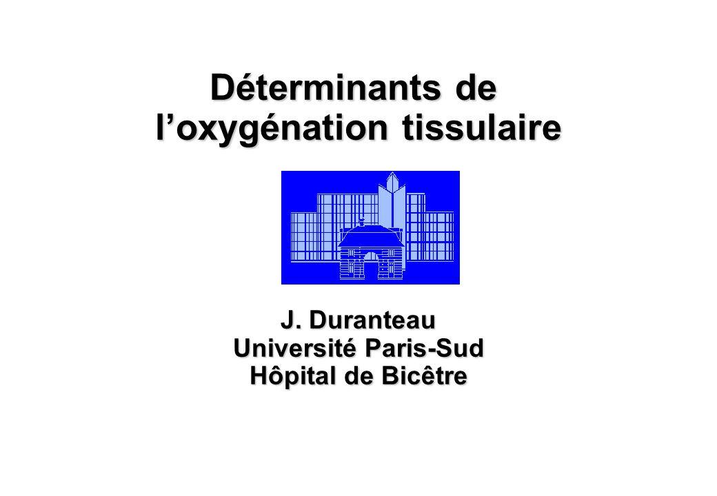 Déterminants de loxygénation tissulaire J. Duranteau Université Paris-Sud Hôpital de Bicêtre