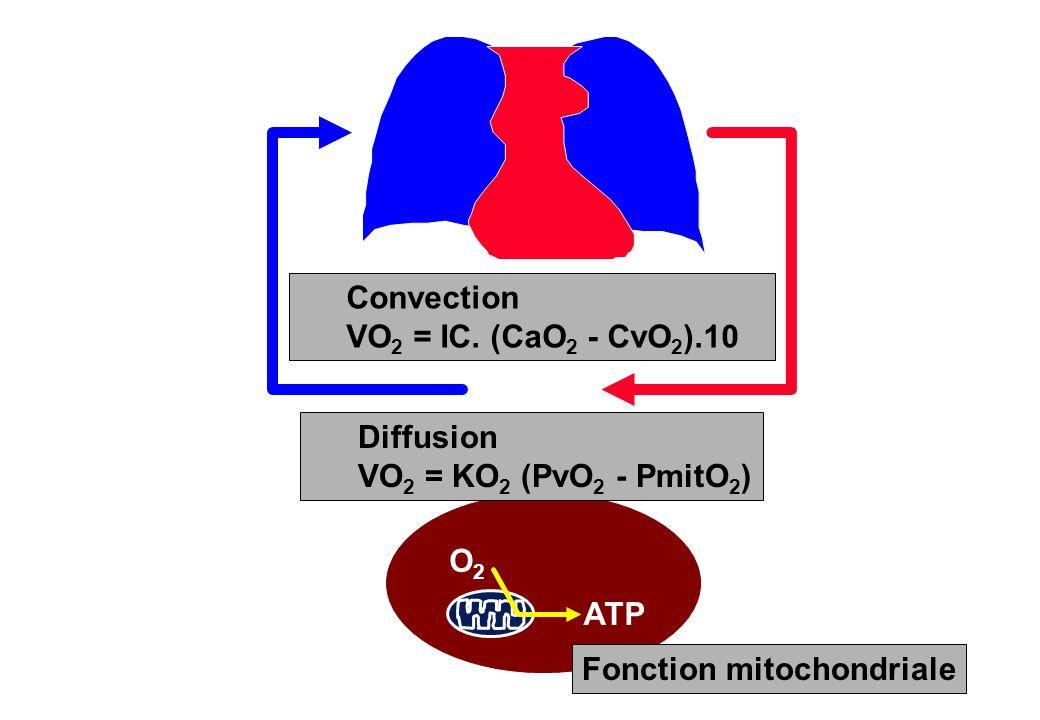 ATP Fonction mitochondriale Convection VO 2 = IC. (CaO 2 - CvO 2 ).10 Diffusion VO 2 = KO 2 (PvO 2 - PmitO 2 ) O2O2