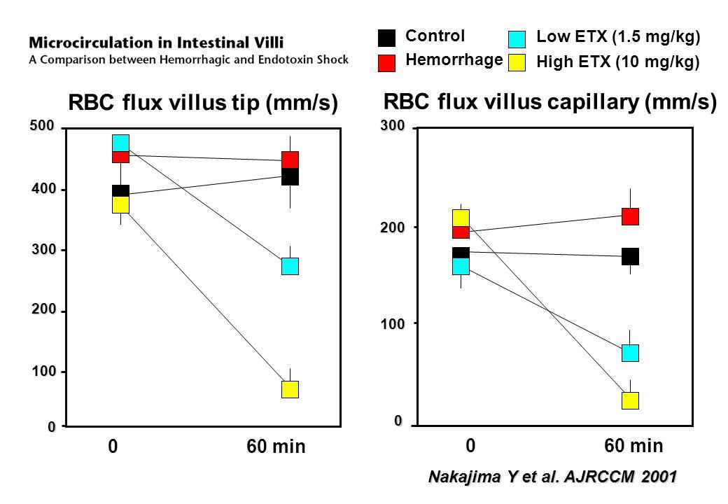 300 200 RBC flux villus tip (mm/s) RBC flux villus capillary (mm/s) 400 0 200 300 100 100 0 60 min 500 Control Hemorrhage Low ETX (1.5 mg/kg) High ETX