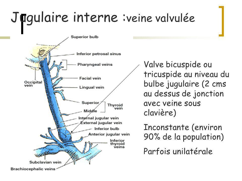 Brain Tissue pO2 Monitoring (PtiO2) Intérêt: mesure de loxygène contenu dans le tissu MAIS: O2 disponible, utilisé ou non.