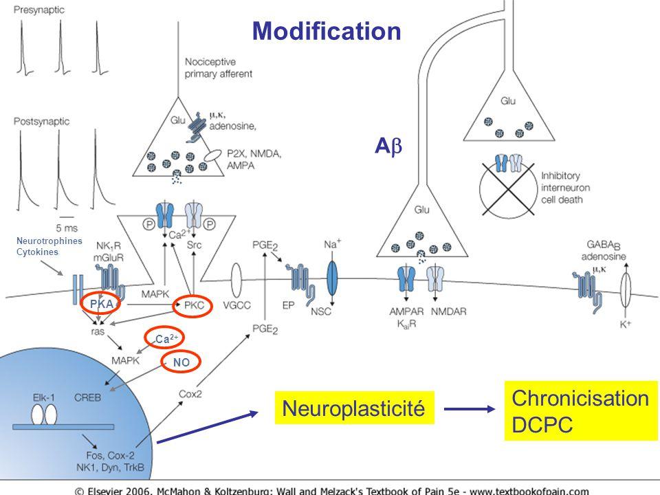 Neuroplasticité Chronicisation DCPC Neurotrophines Cytokines PKA Ca 2+ NO Modification A