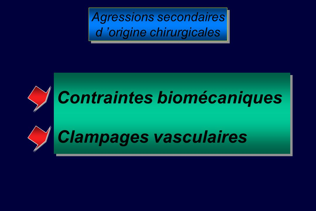 Agressions secondaires d origine chirurgicales Agressions secondaires d origine chirurgicales Contraintes biomécaniques Clampages vasculaires Contraintes biomécaniques Clampages vasculaires