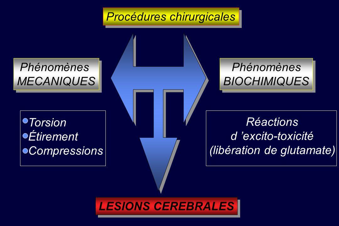 Procédures chirurgicales Phénomènes MECANIQUES Phénomènes MECANIQUES Phénomènes BIOCHIMIQUES Phénomènes BIOCHIMIQUES Torsion Étirement Compressions Réactions d excito-toxicité (libération de glutamate) LESIONS CEREBRALES