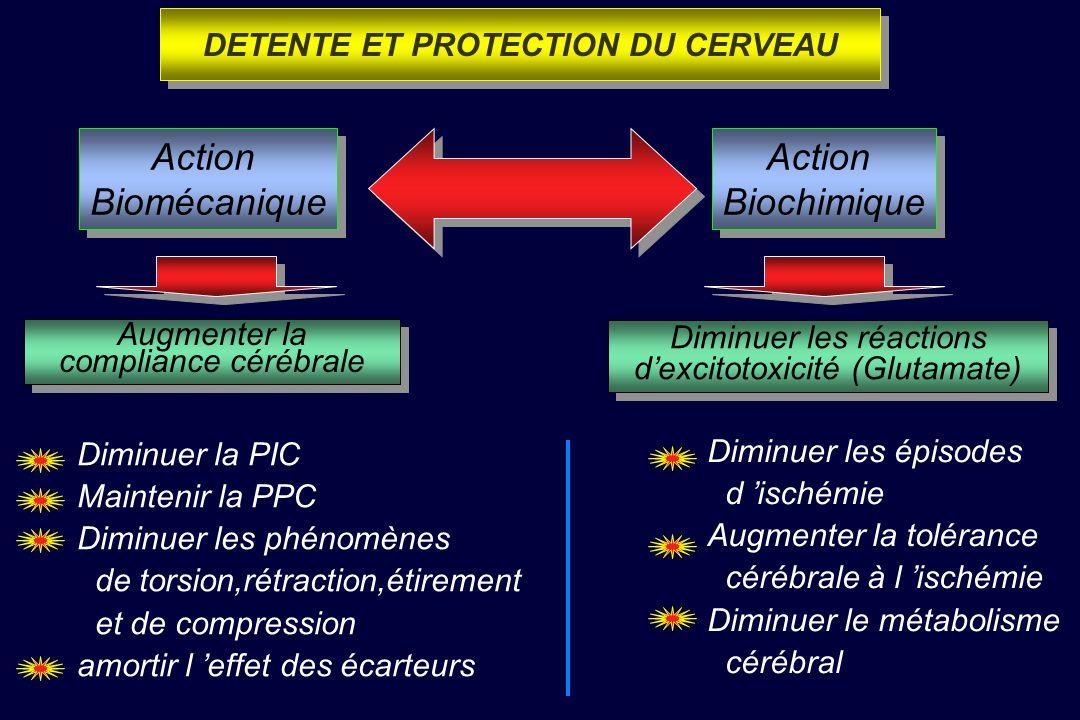 Détente et Protection Cérébrales Détente et Protection Cérébrales Lutte contre ISCHEMIE et MORT NEURONALE Lutte contre ISCHEMIE et MORT NEURONALE But