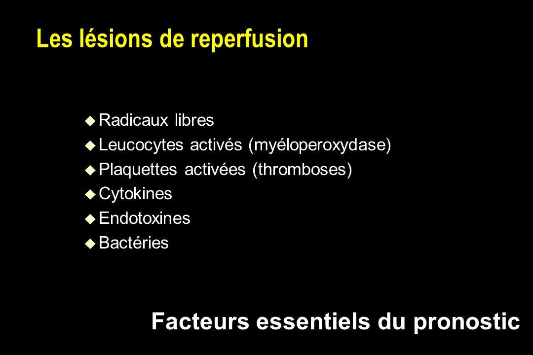 Les lésions de reperfusion u Radicaux libres u Leucocytes activés (myéloperoxydase) u Plaquettes activées (thromboses) u Cytokines u Endotoxines u Bactéries Facteurs essentiels du pronostic