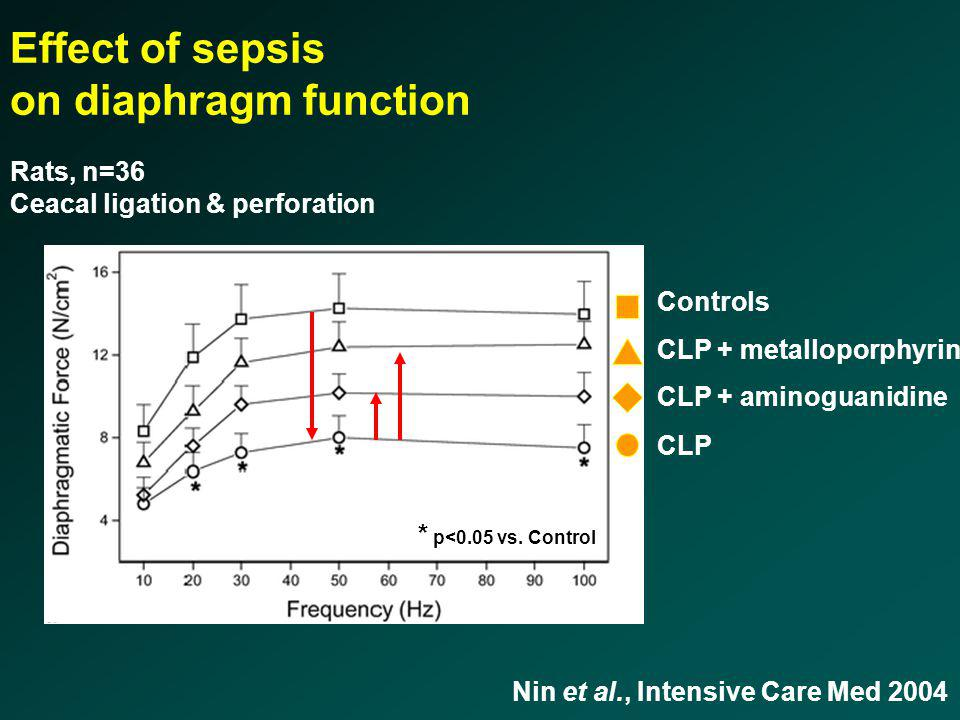 Nin et al., Intensive Care Med 2004 Effect of sepsis on diaphragm function Rats, n=36 Ceacal ligation & perforation Controls CLP CLP + aminoguanidine