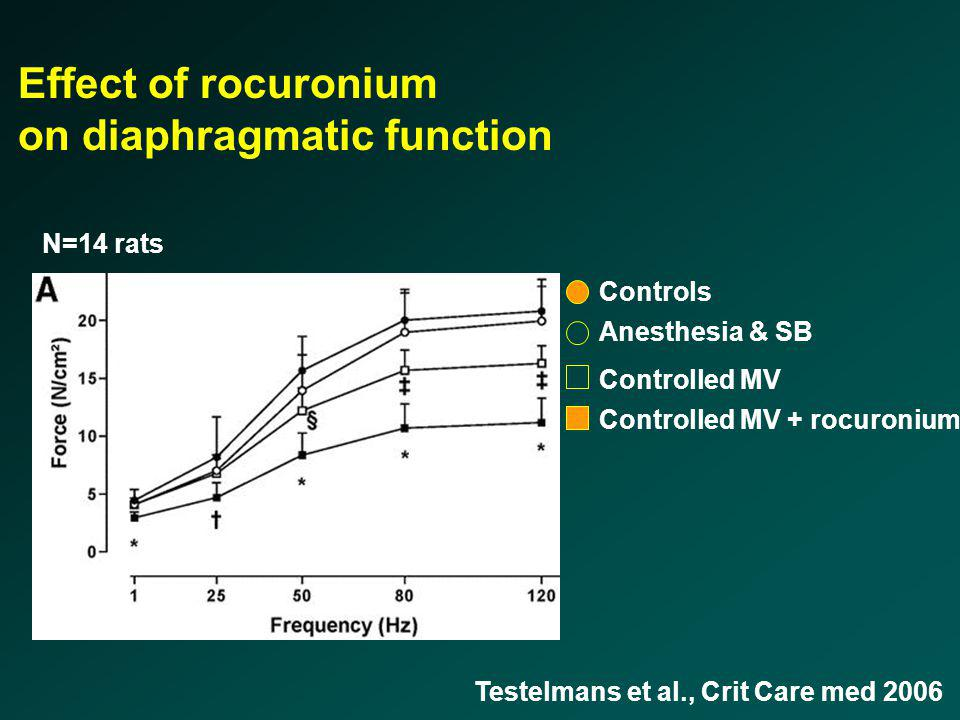 Controls N=14 rats Anesthesia & SB Controlled MV Controlled MV + rocuronium Effect of rocuronium on diaphragmatic function Testelmans et al., Crit Car