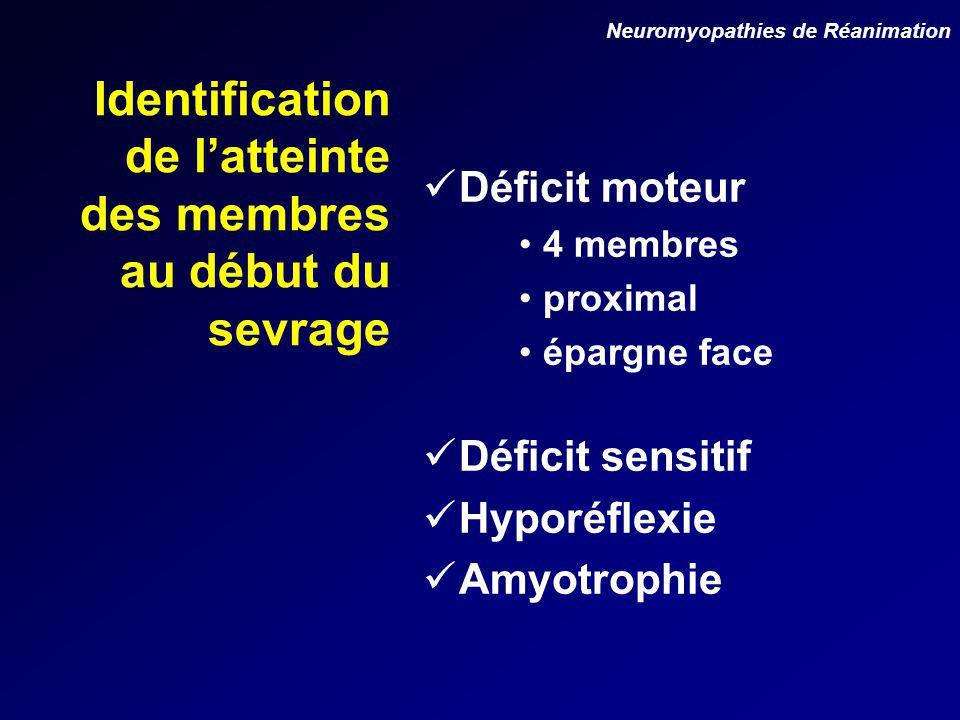 Identification de latteinte des membres au début du sevrage Déficit moteur 4 membres proximal épargne face Déficit sensitif Hyporéflexie Amyotrophie Neuromyopathies de Réanimation