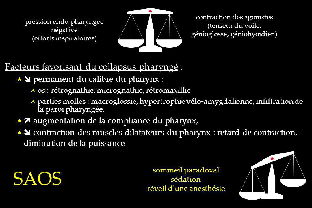 contraction des agonistes (tenseur du voile, génioglosse, géniohyoïdien) pression endo-pharyngée négative (efforts inspiratoires) sommeil paradoxal sé
