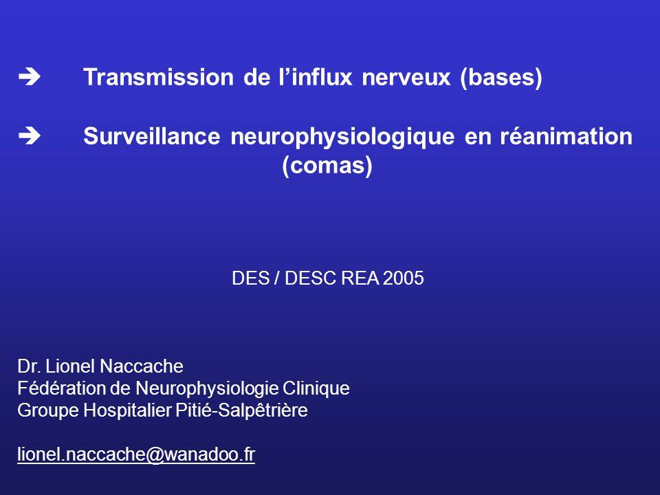 Transmission de linflux nerveux (bases) Surveillance neurophysiologique en réanimation (comas) DES / DESC REA 2005 Dr. Lionel Naccache Fédération de N
