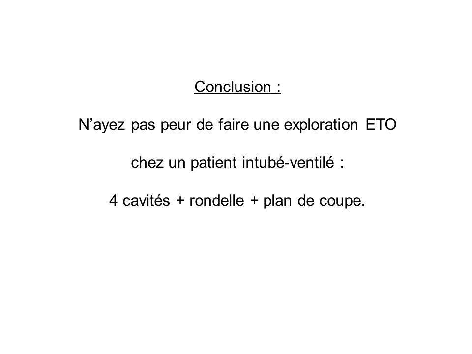 Conclusion : Nayez pas peur de faire une exploration ETO chez un patient intubé-ventilé : 4 cavités + rondelle + plan de coupe.
