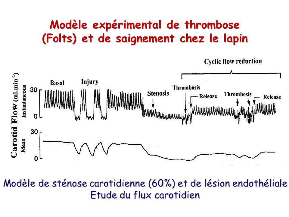Modèle expérimental de thrombose (Folts) et de saignement chez le lapin Modèle de sténose carotidienne (60%) et de lésion endothéliale Etude du flux c