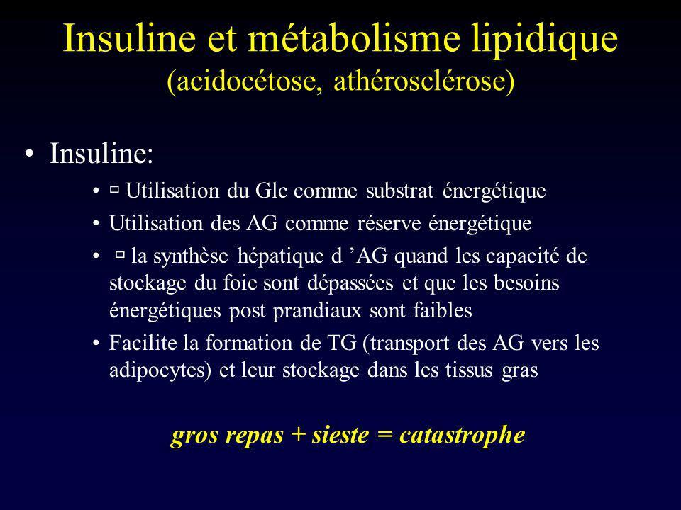 Insuline et métabolisme lipidique (acidocétose, athérosclérose) Insuline: Utilisation du Glc comme substrat énergétique Utilisation des AG comme réser