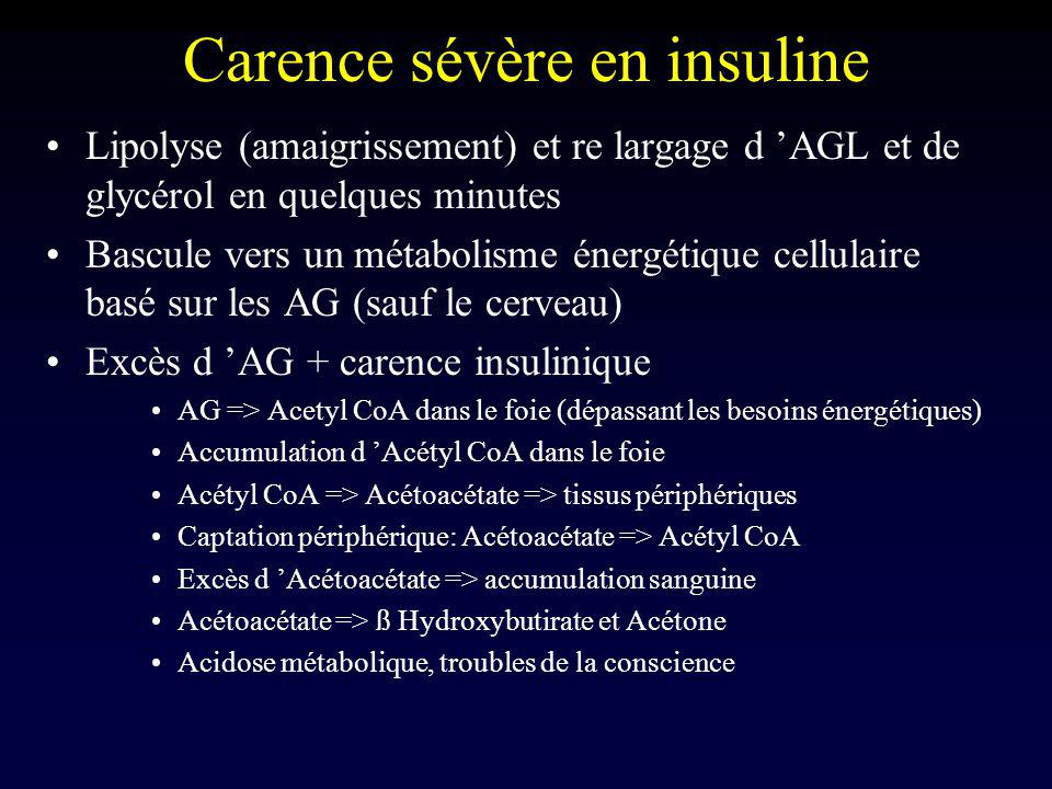 Carence sévère en insuline Lipolyse (amaigrissement) et re largage d AGL et de glycérol en quelques minutes Bascule vers un métabolisme énergétique ce
