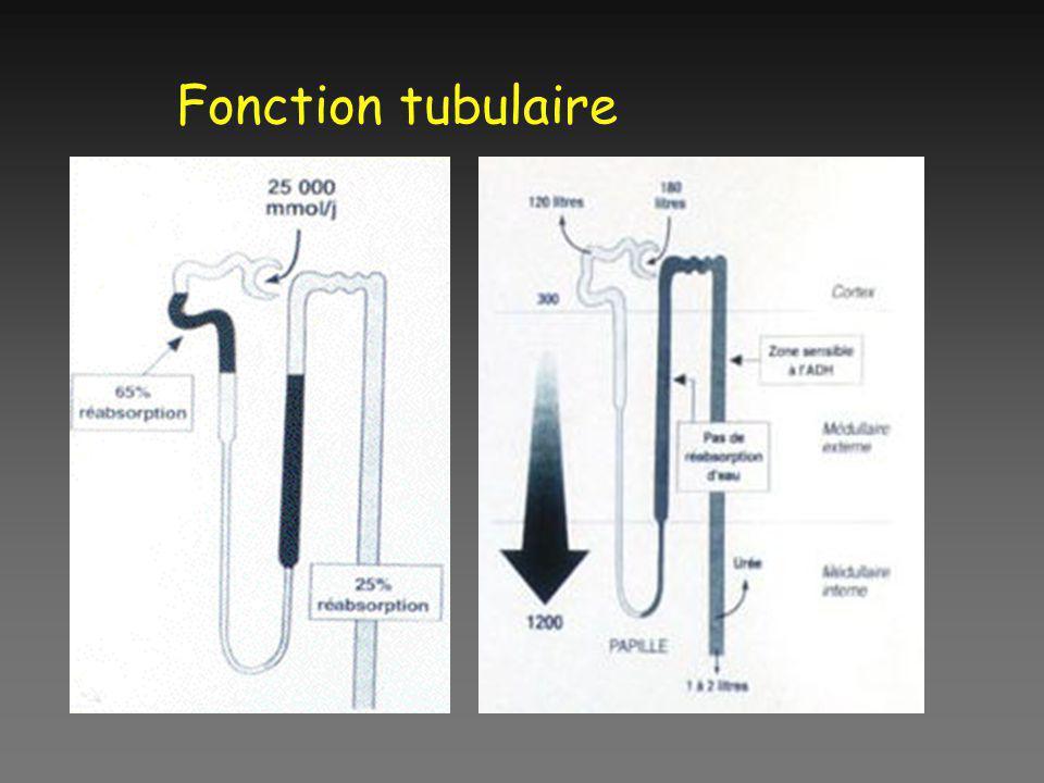 Fonction tubulaire