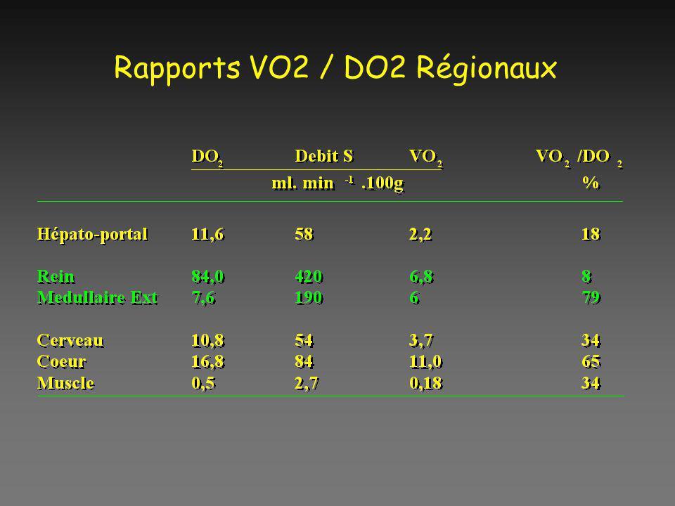 Rapports VO2 / DO2 Régionaux