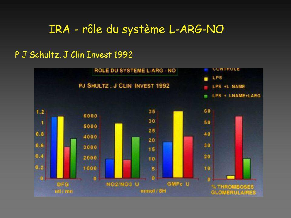 IRA - rôle du système L-ARG-NO P J Schultz. J Clin Invest 1992