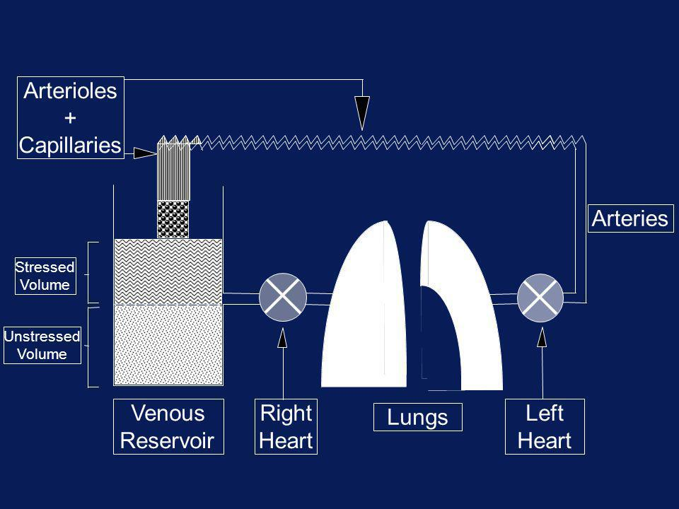 Venous Reservoir Right Heart Lungs Left Heart Arteries Arterioles + Capillaries Stressed Volume Unstressed Volume