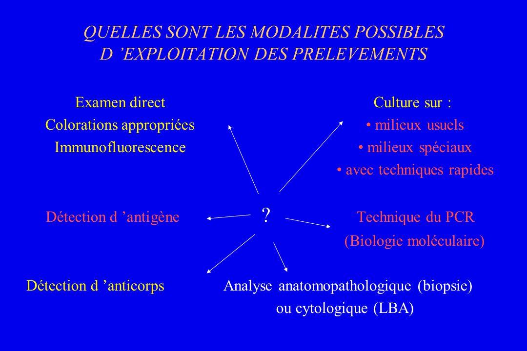 QUELLES SONT LES MODALITES POSSIBLES D EXPLOITATION DES PRELEVEMENTS Examen directCulture sur : Colorations appropriées milieux usuels Immunofluoresce