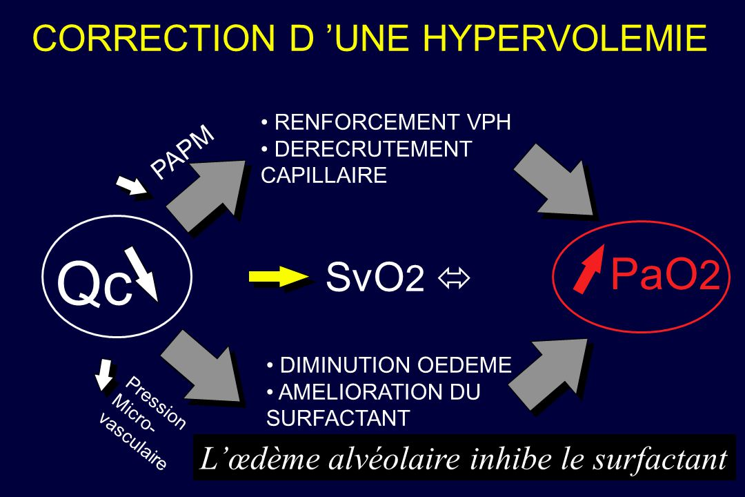 CORRECTION D UNE HYPERVOLEMIE Qc RENFORCEMENT VPH DERECRUTEMENT CAPILLAIRE SvO 2 PaO 2 PAPM Pression Micro- vasculaire DIMINUTION OEDEME AMELIORATION