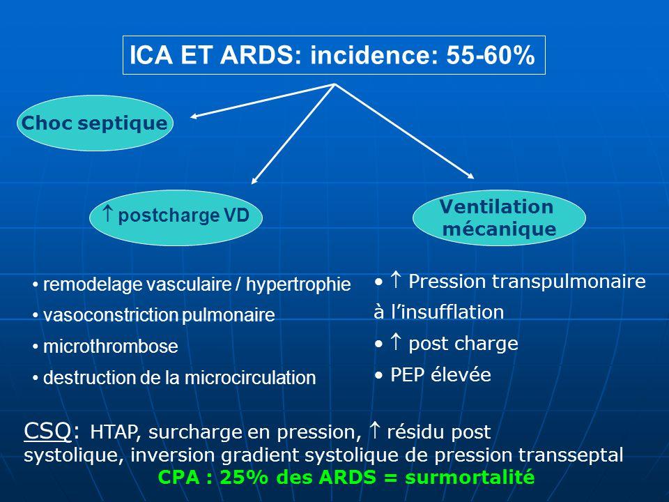ICA ET ARDS: incidence: 55-60% Choc septique Ventilation mécanique postcharge VD remodelage vasculaire / hypertrophie vasoconstriction pulmonaire microthrombose destruction de la microcirculation Pression transpulmonaire à linsufflation post charge PEP élevée CSQ: HTAP, surcharge en pression, résidu post systolique, inversion gradient systolique de pression transseptal CPA : 25% des ARDS = surmortalité