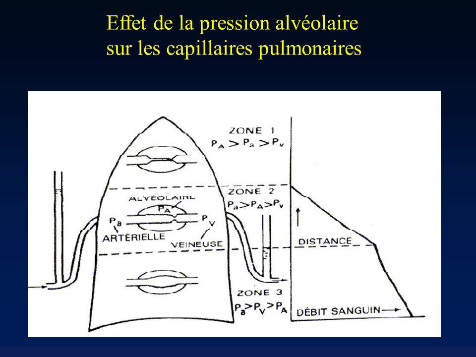 Effet de la pression alvéolaire sur les capillaires pulmonaires