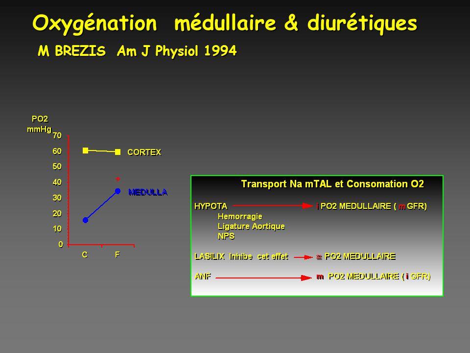 Oxygénation médullaire & diurétiques M BREZIS Am J Physiol 1994