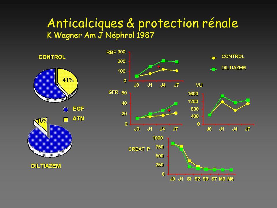 Anticalciques & protection rénale K Wagner Am J Néphrol 1987