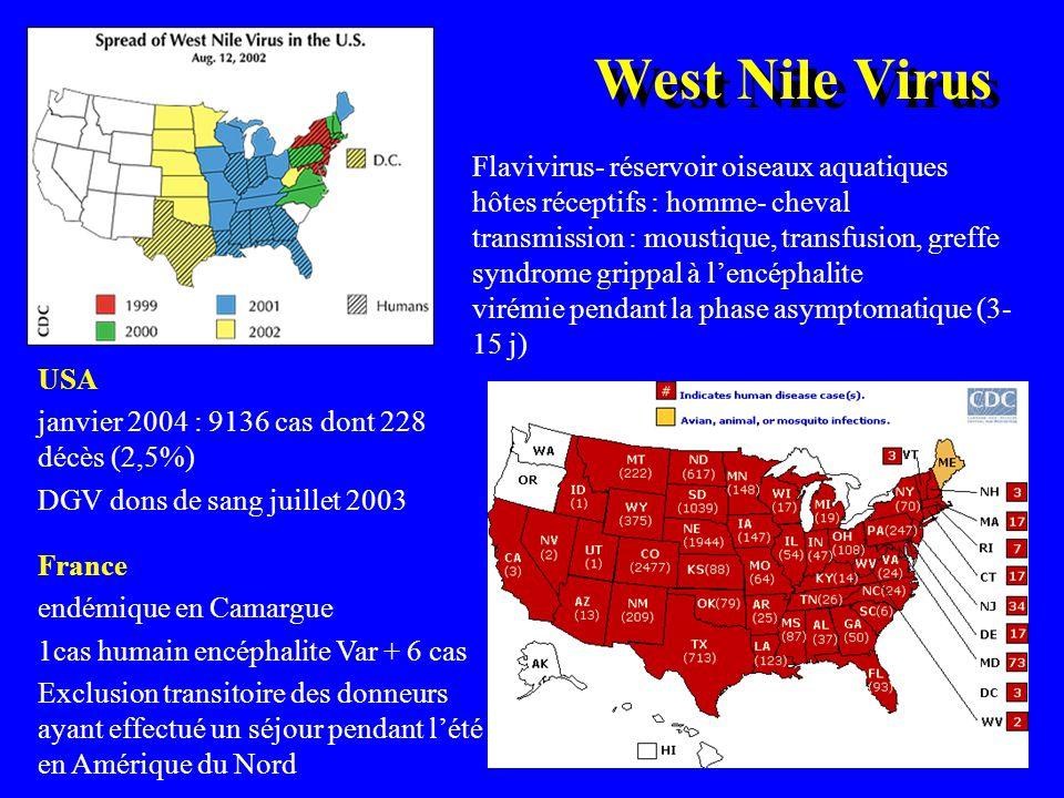 West Nile Virus USA janvier 2004 : 9136 cas dont 228 décès (2,5%) DGV dons de sang juillet 2003 Flavivirus- réservoir oiseaux aquatiques hôtes récepti