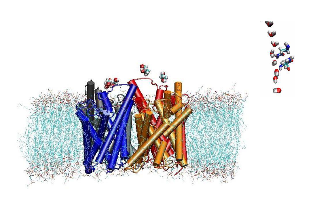 n Lénergie « intrinsèque » des ions : u « Electroneutralité des solutions » Lavoisier : « Considérations Générales sur la Nature des Acides », 1778