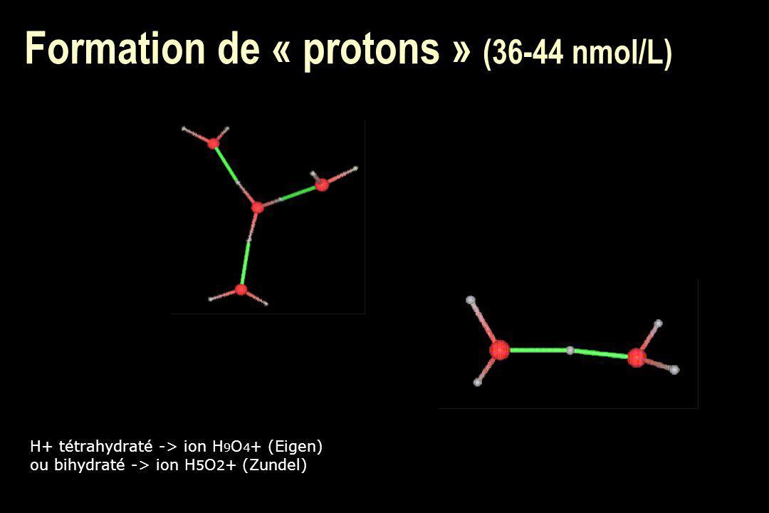 n Transport passif : u eau, urée, méthanol, éthylène glycol n Transport actif : u Tous les ions, glucose, mannitol, glycérol, métabolites...