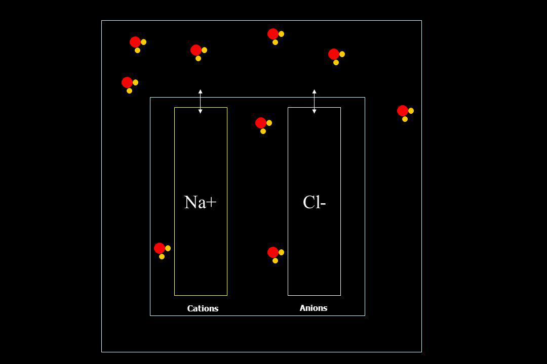 Cations Anions Na+Cl-