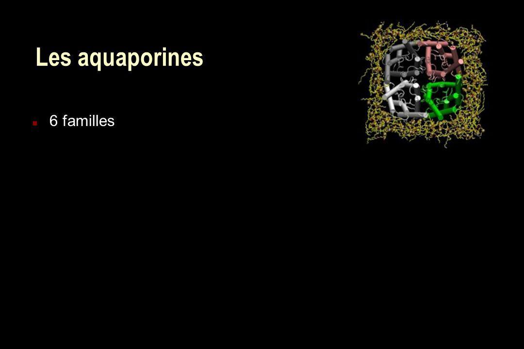 Les aquaporines n 6 familles