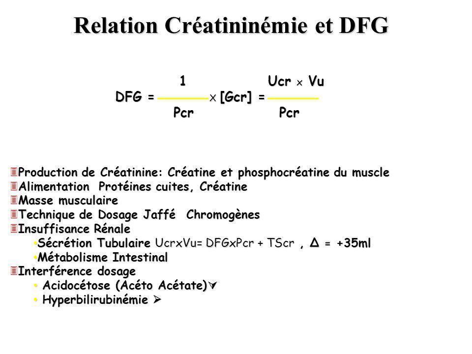 Relation Créatininémie et DFG 1 Ucr x Vu 1 Ucr x Vu DFG = X [Gcr] = Pcr Pcr Pcr Pcr 3Production de Créatinine: Créatine et phosphocréatine du muscle 3
