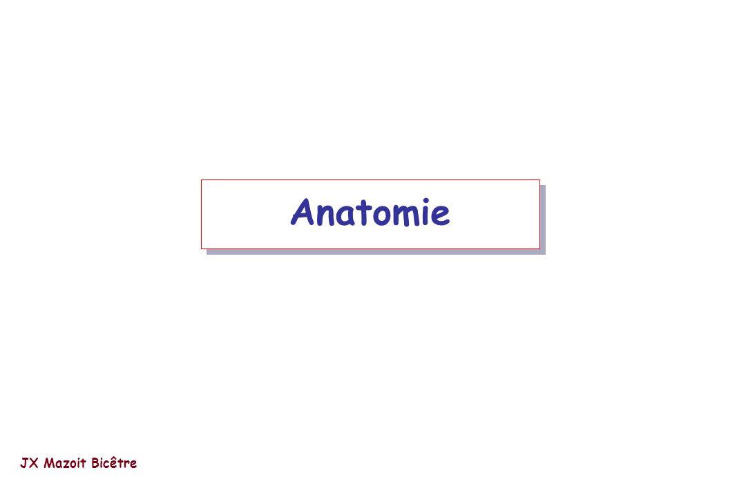 Lonnqvist PA et col. Br J Anaesth 2000; 85: 506-11. Ropivacaine JX Mazoit Bicêtre